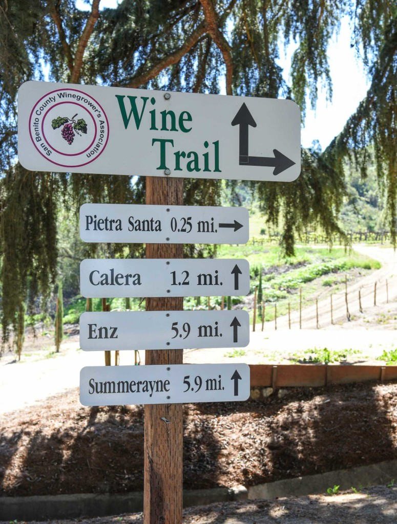 San Benito County Wineries Wine Trail
